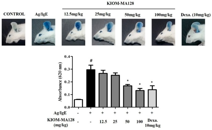 Inhibitory effect of KIOM-MA128 on Ag/IgE-induced passive cutaneous anaphylaxis in mice. IgE-sensitized mice were orally administered KIOM-MA128 (0–100 mg/kg) for 1 h and then intravenously injected with 100 μg DNP-HSA containing 0.5% Evans blue. After 30 min, the mice were euthanized, and then both ears were excised. The extravasated dye in the ears was analyzed using the procedure described in the Materials and Methods section. The data are listed as the mean ± SEM values from eight determinations. # p
