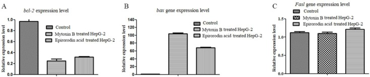 qRT-PCR analysis of the expression levels of bcl-2 , bax , and Fasl in HepG-2 cells treated with mytoxin B and epiroridin acid for 24 h, respectively: ( A ) the expression level of bcl-2 gene; ( B ) the expression level of bax gene; ( C ) the expression level of Fasl gene.