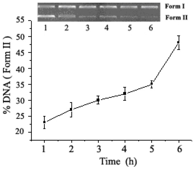 Time course of pUC19 DNA (0.008 µg/µL) cleavage promoted by 1b (6.25 × 10 −7 mol/L) in pH = 7.4 buffers (5 mM Tris-HCl/10 mM NaCl) at 37 °C. Lanes 1–6, reaction time 6, 5, 4, 3, 2, 1 h, respectively.