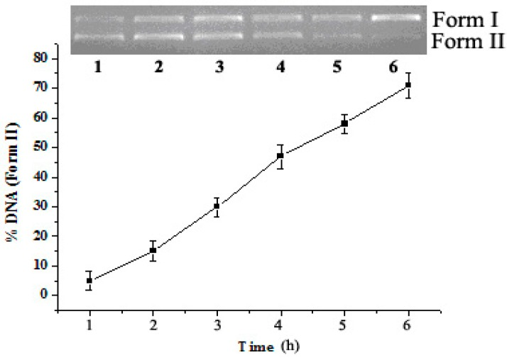 Time course of pUC19 DNA (0.008 µg/µL) cleavage promoted by 2c (3.13 × 10 −7 mol/L) in pH = 6.0 buffers (5 mM Tris-HCl/10 mM NaCl) at 37 °C. Lanes 1–6, 6, 5, 4, 3, 2, 1 h reaction time, respectively.