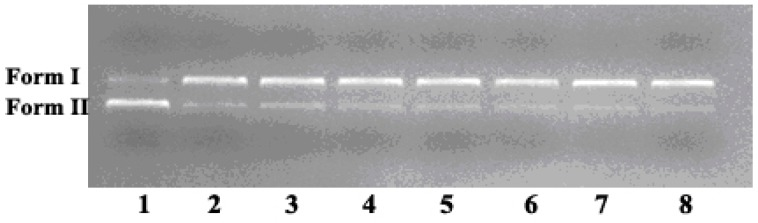 Electropherograms representing cleavage of pUC19 plasmid DNA (0.008 µg/µL) in buffer of different weight ratios of GO to complex 2c (6.25 × 10 −7 mol/L, 5 mM Tris-HCl/10 mM NaCl, pH = 6.0) at 37 °C for 8 h. Lanes 1–7: complex 2c alone, 0.5, 1.0, 2.0, 3.0, 4.0, 5.0, respectively and Lane 8 is DNA control with GO (0.67 μg/μL), respectively.
