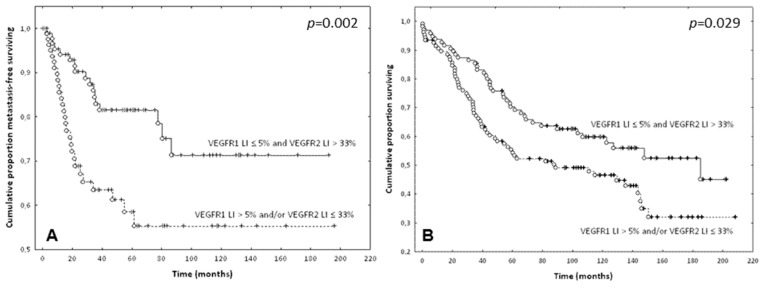Prognostic value of the combination of the VEGFR-1 and VEGFR-2 expression in ECs of CRC: ( A ) Metastasis-free survival curves of patients dichotomized based on the combination of VEGFR-1-LI and VEGFR-2-LI ( p = 0.002). ( B ) Overall survival curves of patients dichotomized in a similar manner ( p = 0.029). Complete and censured data are shown as dots and crosses, respectively. Solid lines identify patients with ECs characterized by a VEGFR-1 LI ≤ 5% and a VEGFR-2 LI > 33%. Dotted lines identify patients with ECs characterized by a VEGFR-1 LI > 5% and/or a VEGFR-2 LI ≤ 33%.