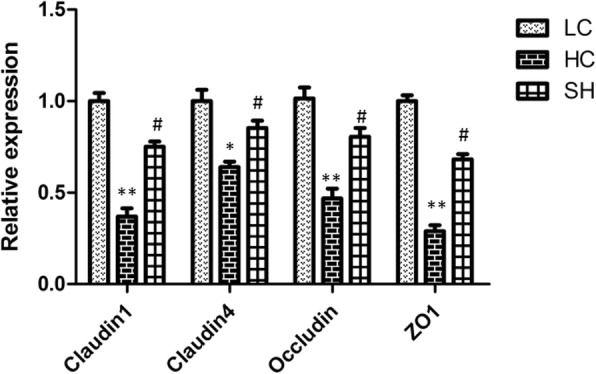 The expression of genes related to tight junction proteins in the colonic epithelium of goats in the LC, HC, and SH groups. The colonic epithelium of the goat fed the HC diet had a significant decline in the mRNA expression of claudin-1, claudin-4, occludin, and ZO-1 compared with that in the LC group, while no significant change between the SH and LC groups was observed. The results are expressed as fold changes relative to those in the LC group (mean ± SEM). * indicates P