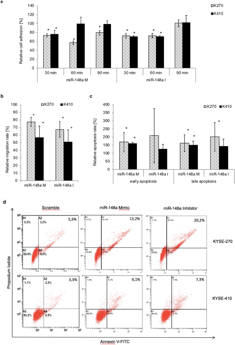 Effect of miR-148a-3p expression on biological behaviour in ESCC cell lines: adhesion, migration and apoptosis. Effect of miRNA modulation on adhesion ( a ) migration ( b ) and apoptosis ( c , d ) in ESCC cell lines KYSE-270 and KYSE-410. Relative migration and adhesion ratio compared to control was measured by crystal violet staining 48 h after transfection. Adhesion assays were performed five times; migration assays six times. Relative early and late apoptosis rate compared to control was measured by 7AAD/Annexin-FITC staining 48 h after transfection ( d ). Apoptosis experiments were performed in six independent replicates. Data (student t-test) are presented as means ± standard deviation. *p