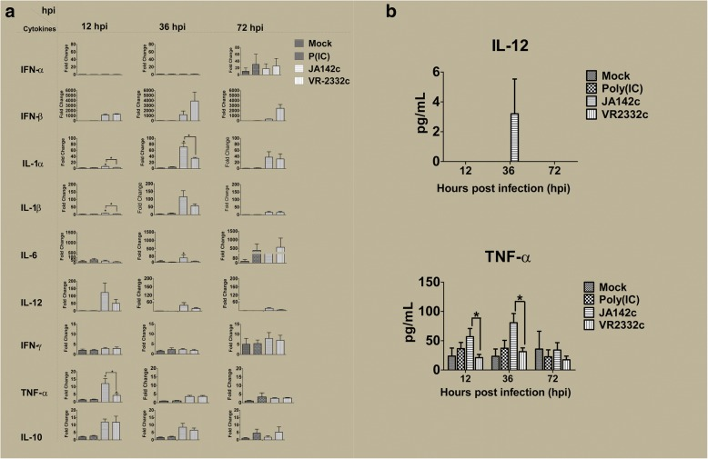 Cytokine expression in PBMC cultures. a mRNA and b protein expression of cytokines in PBMCs and supernatants (n = 6), as determined by real-time PCR and ELISA, respectively, at 12, 36 and 72 hpi. Asterisks indicate significant differences in cytokine expression induced by each virus or stimulant compared with mock treatment or significant differences between JA142c and VR2332c (* indicates p ≤ 0.05, ** indicates p ≤ 0.01)