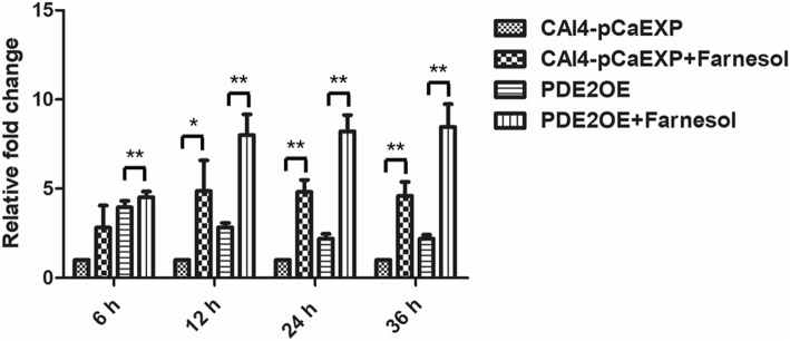 The expression of gene PDE2 in the presence of farnesol. Farnesol increased the expression of PDE2 in the biofilms of the CAI4-pCaEXP strain at 12, 24 and 36 h biofilm phases and increased the expression of PDE2 in the biofilms of the PDE2OE strain at 6, 12, 24 and 36 h biofilm phases compared to the respective untreated controls. One-way analysis of variance (ANOVA) was employed to assess the statistical significance of differences in matched groups, while paired t-tests were performed for intra-group comparisons. *: p