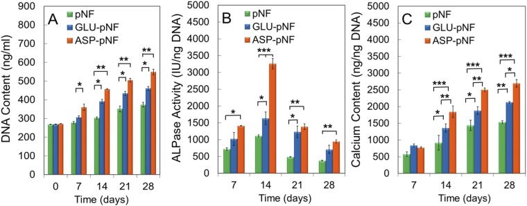 <t>DNA</t> content ( A ) <t>ALP</t> activity ( B ) and calcium content ( C ) of human marrow stromal cells (hMSCs) seeded on CAP treated pNF, GLU-pNF, and ASP-pNF and incubated in osteogenic medium for up to 28 days. Error bars represent mean ± SE (n = 5) [significant differences were determined by one-way ANOVA [Newman–Keuls multiple comparison test, (*p\0.05, **p\0.01, ***p\0.001)].