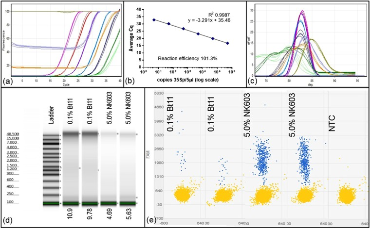 Copy number determination using quantitative PCR against standard curve, Quant Studio 3D digital PCR and TapeStation analysis. ( a ) Quantitation of 0.1 percent Certified Reference Material (CRM) Bt11 DNA extract and known dilutions of linearised plasmid pART7[49] containing the 35Sp sequence incrementally from 500000 copies (pink) to 5 copies per 5 microlitres (dark green). Dilutions of the 0.1 percent Bt11 extract were; mid-green for undiluted, mid-blue for 1:2 dilution and light brown for 1:5 dilution. NTCs: pale green. ( b ) Derived standard curve using pART7 data. Standard curve of this linear plasmid DNA has calculated PCR efficiency of 101.3 percent with R2 = 0.9987. ( c ) Melt curve analysis of amplicons from ( a ). ( d ) TapeStation analysis of genomic DNA for undiluted 0.1 percent Bt11 and 5.0 percent NK603 CRM DNA extracts using an Agilent genomic DNA ScreenTape. ( e ) Quant Studio 3D digital PCR results using 35Sp primers with a TaqMan probe (see Methods) showing negative partitions in yellow and positive partitions in blue from which the concentration of the samples are calculated (Table 1 ).
