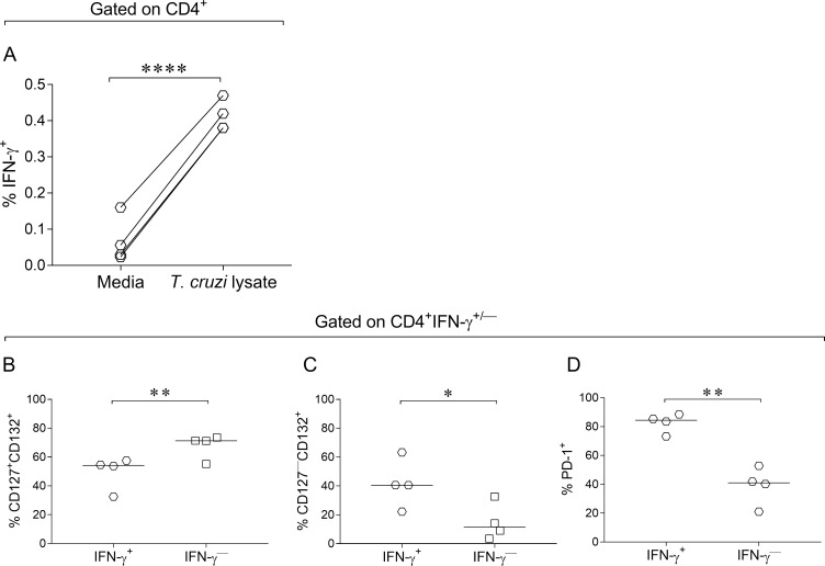 Increased downregulation of CD127 expression and upregulation of PD-1 expression in IFN-γ-producing <t>CD4</t> + T cells. PBMCs were stimulated for 18–20 h with T . cruzi lysate or media alone. Cells were stained with FV510, CD4, CD127, CD132 and CD279 (PD-1) monoclonal antibodies followed by fixation and permeabilization for intracellular staining with anti-IFN-γ monoclonal antibody. Each symbol represents the expression of CD127 +/— CD132 + (A-C), or PD-1 (D) in IFN-γ-producing and IFN-γ nonproducing CD4 + T cells (D). Median values are indicated as horizontal lines. Comparisons between IFN-γ-producing and IFN-γ nonproducing groups were performed using paired t test. * p ≤ 0.05 and ** p ≤ 0.01 compared with IFN-γ nonproducing T cells. **** p ≤ 0.001 compared with media.