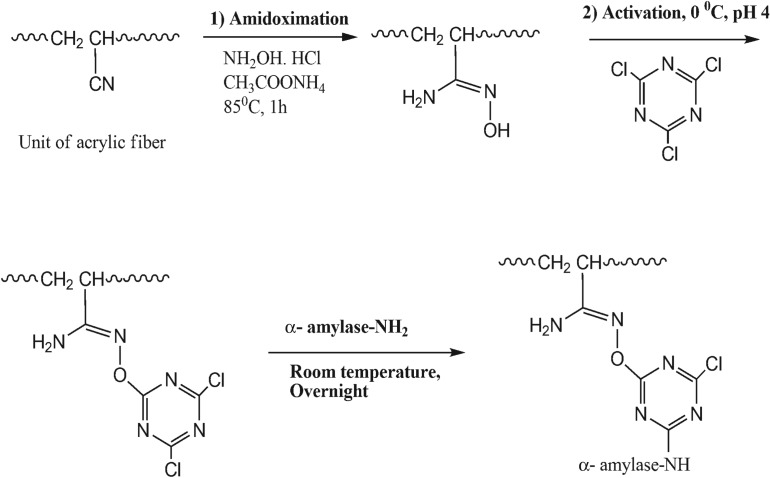 Amidoximation, activation and immobilization of <t>α-amylase</t> onto acrylic fibre.