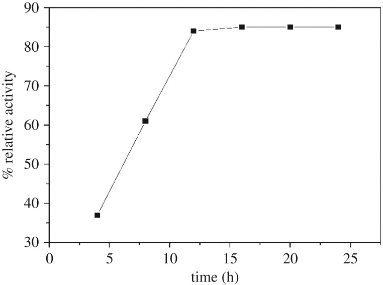 Effect of immobilization time on the relative activity of the immobilized α-amylase.