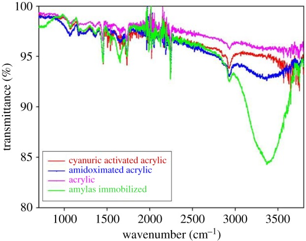 FTIR spectra of acrylic, amidoximated acrylic, activated acrylic and immobilized α-amylase fabric samples.