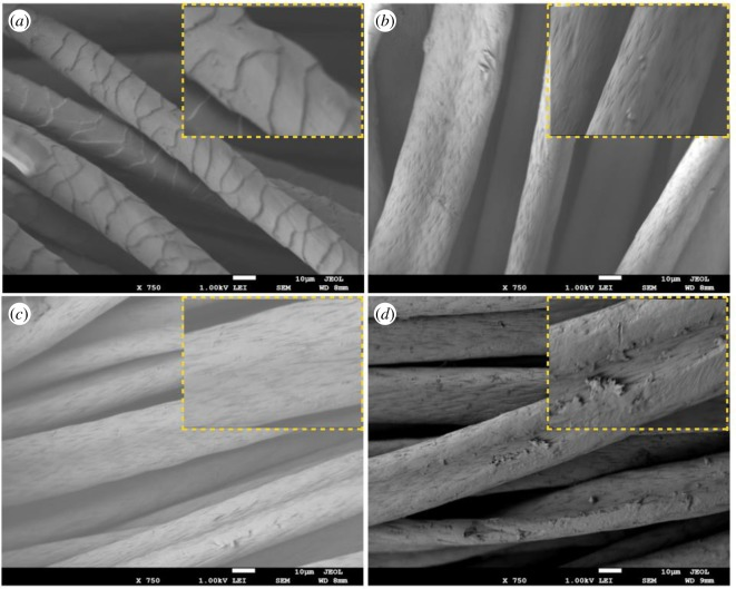 Low and high magnification (inset) FESEM images of (a ) pure acrylic fibre, ( b , c ) acrylic fibres treated with NH 2 OH · HCl and cyanuric chloride, respectively, ( d ) immobilization of α-amylase after chemical treatment.