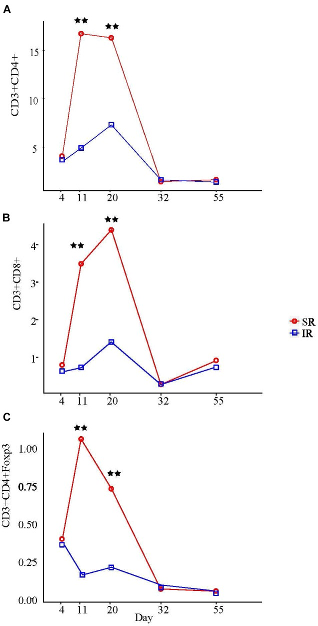 Effect of rearing environment and source of nutrients during lactation on absolute CD3+CD4+ T helper cells (A) , CD3+CD8+ cytotoxic T cells (B) , and CD3+CD4+Foxp3+ regulatory T cells (C) in blood [×10 6 /ml] in 4-, 11-, 20-, 32-, and 55-day-old pigs (LS means). One pig from each litter (10 litter per treatments) was selected for blood sampling. The same pigs were sampled throughout the entire study. The whole blood samples (3 mL) were obtained at day 4 (initial), 11, 20 (weanling), 32, 55, and 103 of ages. PBMCs were isolated using Histopaque ® 1077 (Sigma-Aldrich, St. Louis, MO, United States) density gradient centrifugation, counted by hemocytometer, and expressed as blood concentration based on the volume of whole blood used to isolate the PBMCs, the total number of PBMCs isolated, and the proportions of lymphocyte subsets determined by immunofluorescent staining and flow cytometry. Results on day 103 are presented in Supplementary Table S4 . Two stars refer to ages having significant differences between treatments when compared to other ages at probability value