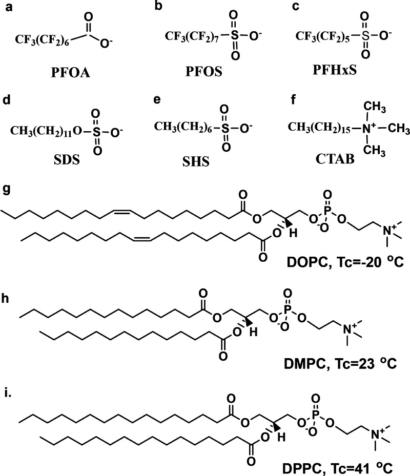 The structures of the three PFCs: (a) PFOA, (b) PFOS, and (c) PFHxS; three surfactants: (d) SDS, (e) SHS, and (f) CTAB; and three lipids: (g) DOPC, (h) DMPC, and (i) DPPC used in this study.