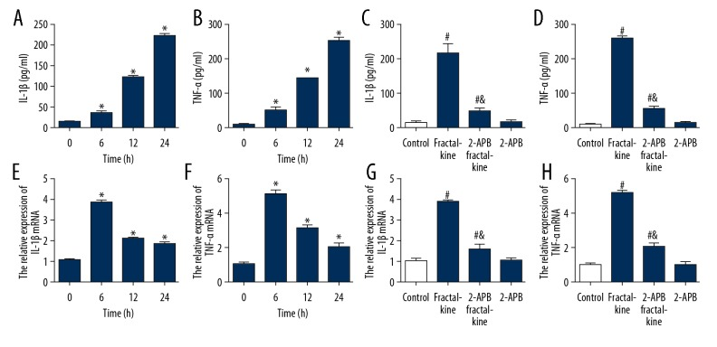 IP 3 -mediated calcium signaling is involved in fractalkine-induced inflammatory responses in vitro. ( A, B ) The increased of IL-1β and TNF-α by exposed to fractalkine persistently. ( C, D ) The increased of IL-1β and TNF-α was decreased by 2-APB. ( E, F ) The mRNA of IL-1β and TNF-α were increased by exposed to fractalkine persistently. ( G, H ) The mRNA of IL-1β and TNF-α were decreased by 2-APB. * P