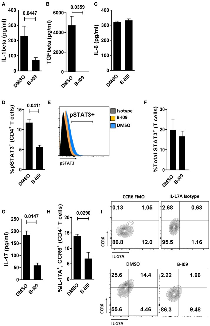 Targeting XBP-1s abrogates human moDC production of IL-1β, TGFβ, and diminishes alloresponder Th17 differentiation . (A–C) Supernatant concentrations of IL-1β, TGFβ, or IL-6 from LPS-stimulated moDCs exposed to B-I09 or DMSO after 24 h of culture are shown. Replicate means from 5 (IL-1 β), 3 (TGFβ), and 4 (IL-6) independent experiments are shown, paired t -test. (D–H) T cells were cultured with B-I09 or DMSO pre-treated moDCs (moDC:T cell ratio of 1:30), and additional B-I09 (20 μM) or DMSO (0.1%) was added once on day 0. pSTAT3 + CD4 + T cells were analyzed at day +5 by flow cytometry (D) and representative histograms are shown (E) . Means from 3 independent experiments are shown, paired t -test. (F) Total STAT3 was measured in T cells from co-cultures of DCs and T cells treated with B-I09 or DMSO. Means from 3 experiments are shown. In similarly treated co-cultures, the supernatant concentration of IL-17 was quantified (G) and Th17 (CD4 + , CCR6 + , IL-17A + ) differentiation was evaluated by flow cytometry (H,I) . Replicate means from 3 (IL-17 ELISA) and 4 (Th17) independent experiments, paired t -test. (I) Representative contour plots are shown.