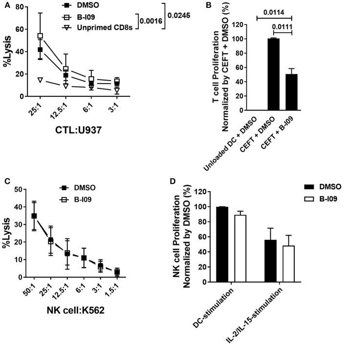XBP-1s is dispensable for anti-tumor activity by CD8 + cytotoxic T lymphocytes and NK cells. (A) Replicate mean specific lysis by human CD8 + CTL generated in vitro using PBMCs stimulated by irradiated U937cells (1:1) on days 0 and +7 of a 10–12 day culture. B-I09 or DMSO was added once on days 0 and +7. Tumor-specific killing by purified CD8 + T cells was determined using fresh U937 cells. U937 lysis was measured by a colorimetric assay after 4 h. Triplicate means from 3 independent experiments are shown. (B) T cell proliferation stimulated by autologous moDCs loaded with CMV, EBV, influenza, or tetanus peptides is shown. B-I09 or DMSO was added once on day 0. T cell proliferation (MTS colormetric assay) was measured on day +3. Replicate means from 4 independent experiments are shown, Dunnett's test. (C) Mean specific lysis by human NK cells against K562 targets is shown. B-I09 or DMSO was added at the outset of the culture. K562 lysis was measured by a colorimetric assay after 4 h. Replicate means from 3 independent experiments are shown. (D) NK cell proliferation stimulated by allogeneic moDCs (moDC:NK cell ratio 1:10) or IL-2 plus IL-15. NK cell proliferation (MTS colormetric assay) was measured on day +5. Replicate means from 3 independent experiments are shown.