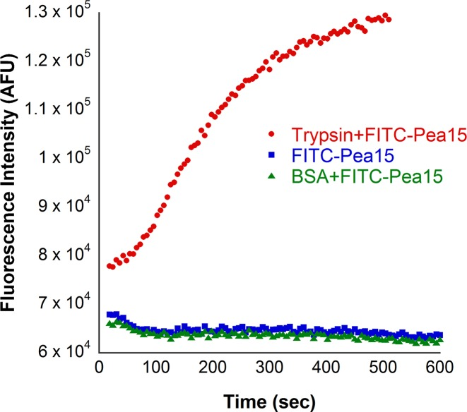 Protease assay with trypsin using FITC Pea15 as a substrate Increase in fluorescence of unquenched FITC was recorded at 485 nm excitation and 535 nm emission wavelengths. BSA has been used as negative control.