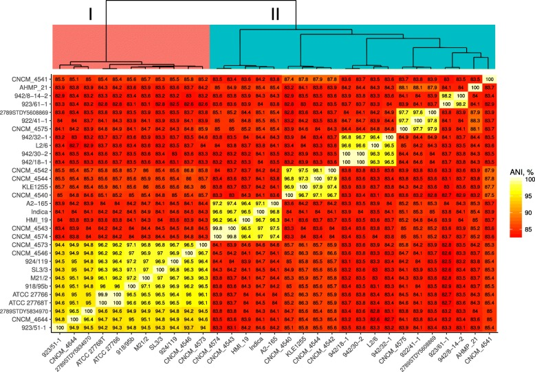 BLASTn-based average nucleotide identity (ANIb) between available 31 complete and draft genomes of F. prausnitzii . Dendrogram on top built by hierarchical clustering using Ward.D2 algorithm