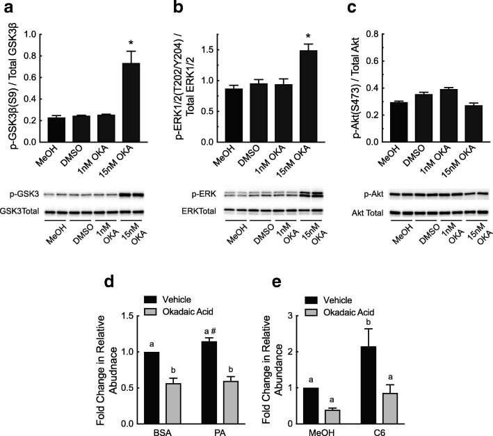 Palmitate- and C6 ceramide-induced changes in Tnnt3 pre-mRNA alternative splicing are blocked by inhibition of PP2A. a-c L6 myotubes were pretreated for two hours with either 1 or 15 nM okadaic acid (OKA) or an equal volume of MeOH or DMSO for 24-h prior to Western blot analysis. The ratio of ( a ) GSK3β at S9 to total GSK3β, ( b ) ERK1/2 at T202/Y204 to total ERK1/2, and ( c ) phosphorylated Akt at S473 to total Akt was assessed. L6 myotubes were pretreated for two hours with okadaic acid or an equal volume of DMSO (Vehicle) prior to a 24-h treatment with ( d ) 150 μM PA conjugated to BSA (PA) or an equal volume of BSA alone or ( e ) 20 μM C6 ceramide (C6) or an equal volume of methanol (MeOH). The fold change in the relative abundance of the 737 base pair Tnnt3 splice form was assessed by capillary electrophoresis ( d and e ). Data are presented as means ± SEM from three independent experiments using three replicates per treatment. Statistical significance was assessed by Student's t-test ( a - c ) or Two-way ANOVA with Fishers LSD post-hoc test for multiple comparisons ( d and e ). Statistically different means are denoted with an asterisk (*) or different letters above the bars ( p ≤ 0.05). # p = 0.08 vs. BSA/Vehicle