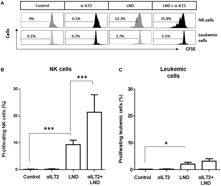 ILT2 blockade and lenalidomide promote NK cell proliferation in CLL. PBMCs from 11 CLL patients were stained with CFSE and cultured in the presence of anti-ILT2 blocking antibody (10 μg/ml) or irrelevant IgG 1 and lenalidomide (LND, 1 μM) for 14 days. The proliferation of NK cells and leukemic cells was analyzed by evaluating the expression of CSFE by flow cytometry. (A) Histograms show the flow cytometry profiles corresponding to CFSE expression on NK cells (CD3 − CD56 + ) and leukemic cells (CD19 + cells) of a representative CLL patient. (B,C) The histograms show the comparison of the percentage of proliferating NK cells (B) and leukemic cells (C) among the different experimental conditions analyzed. Bars represent the mean ± SEM from samples analyzed. SEM, Standard Error of the Mean; Wilcoxon Matched-Pairs Signed Ranks test; * P