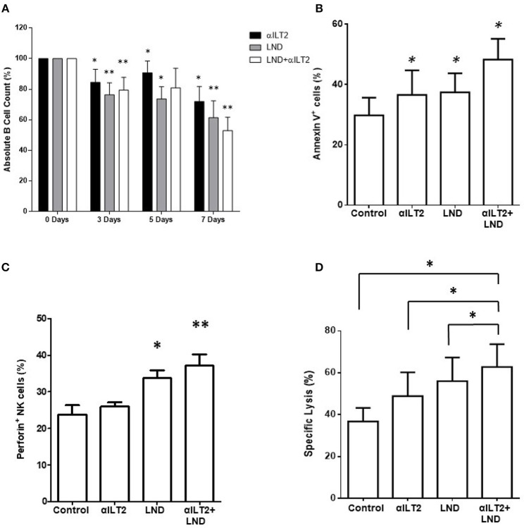 ILT2 blockade and lenalidomide promote NK cell cytotoxicity and the elimination of primary leukemic cells from patients with CLL. PBMCs obtained from 6 CLL patients were cultured in the presence of anti-ILT2 blocking antibody (10 μg/ml) or irrelevant IgG 1 and lenalidomide (LND, 1 μM) for the time points indicated. (A) The absolute numbers of leukemic cells were then analyzed after 3, 5, and 7 days of treatment by staining with anti-CD19 antibody and PKH26 microbeads as a reference. (B) The effect of ILT2 blockade and lenalidomide (7 days) on the apoptosis of leukemic cells was evaluated by annexin V assay by flow cytometry ( n = 11). (C) NK cell intracellular perforin expression was evaluated by flow cytometry analysis in PBMCs from 6 patients with CLL upon 7 days of treatment with anti-ILT2 blocking antibody (10 μg/ml) or irrelevant IgG 1 and lenalidomide (LND, 1 μM). (D) NK cell cytotoxic activity against K562 leukemia cells after a week of treatment with anti-ILT2 blocking antibody (10 μg/ml) or irrelevant IgG 1 and lenalidomide (LND, 1 μM) was evaluated by calcein assay ( n = 5). Bars represent the mean ± SEM of the different treatments used. SEM, Standard Error of the Mean; Wilcoxon Matched-Pairs Signed Ranks test; * P