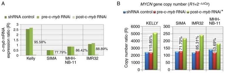 The effect of c- myb RNAi treatment on MYCN gene copy number. (A) Interference rate of c- myb mRNA was presented as compared with shRNA controls in MYCN -amplified neuroblastoma cell lines. The expression levels of c- myb mRNA were determined pre- and post-c- myb RNAi treatment of Kelly, SIMA, MHH-NB-11 and IMR32 cell lines, as normalized to the Cp values of target and reference genes of the SH-SY5Y control cell line. R-value was calculated using the mean Cp ± standard error of duplicate or triplicate experiments in case of discordant results. (B) MYCN / p53 DNA copy number ratios were determined by the delta-delta Cp method pre- and post-c- myb RNAi treatment as compared with shRNA control in MYCN -amplified neuroblastoma cell lines. Data are expressed as mean Cp ± standard error of the mean from ≥6 independent experiments. *P