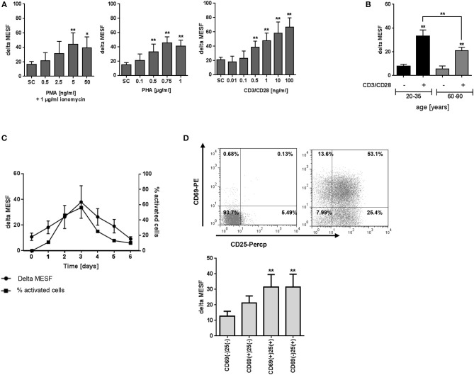 Effect of activation on T2R38 expression in PBMC. (A) PBMC were stimulated with different concentrations of PMA/ionomycin (1 μg/ml), PHA or anti-CD3/CD28 mAbs for 72 h ( n ≥ 5) (B) Isolated PBMC from young and elderly individuals were stimulated with 1 ng/ml CD3/CD28 for 72 h ( n ≥ 5) (C) PBMC were stimulated with 1 ng/ml CD3/CD28 for the indicated time points, activated cells were determined by the percentage of blast cells ( n ≥ 3) (D) PBMC were stimulated with 1 ng/ml CD3/CD28 and T2R38 expression on CD69+/CD25+ CD3+T lymphocytes determined at the indicated time points ( n = 5). A representative staining of surface markers CD69+/CD25+ at day 2 from one subject is shown as scattergram. T2R38 expression (delta MESF) was assessed by Quantum Alexa Fluor 488 MESF beads in comparison to rabbit IgG isotype control; bars are means + SD (A,B) or means ± SD (C,D) . Significance of difference was calculated relatively to the respective control, * p