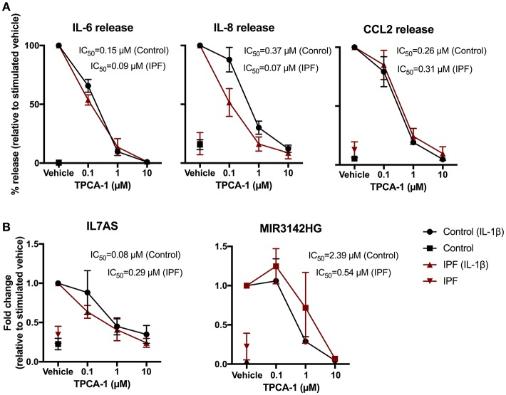 IL-1β-induced expression of IL7AS, MIR3142HG, and the inflammatory mediators is mediated via the NF-κB signaling pathway in control and IPF fibroblasts. Control and IPF fibroblasts were pre-incubated in the stated concentration of TPCA-1 or 0.1% (v/v) DMSO (vehicle) and then incubated in absence or presence of IL-1β for 24 h prior to measurement of IL6, IL8 and CCL2 release (A) and IL7AS and MIR3142HG expression (B) . Data is normalized against IL-1β stimulated cells (100%) and represents the mean ± SEM of five control and IPF patients. The logIC 50 for each individual was determined in GraphPad Prism and comparison between control and IPF groups was performed using an unpaired t -test. The IC 50 was calculated from the mean logIC 50 values.