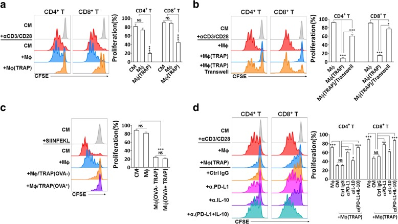 TRAPs exposed macrophages inhibit T cell proliferation via PD-L1 and IL-10. a-d Representative determination of T cell proliferation by flow cytometry. a , b , d CFSE-labeled purified CD3 + T cells were activated by immobilized anti-CD3 plus soluble anti-CD28 mAb, and were either cultured alone or cocultured with BMDMs pretreated with or without TRAPs at a ratio of 5:1 for 3 d. b A transwell chamber was used to separate BMDMs from T cells. d BMDMs were cocultured with T cells in the presence of anti-PD-L1 mAb, anti-IL-10 mAb or control IgG. c BMDMs were left untreated or pretreated with 10 μg/ml B16F10 TRAPs or B16F10-OVA TRAPs for 2 d, and loaded with OVA 257–264 peptide SIINFEKL (1 μg/ml) for 2 h, washed, were then incubated with CFSE-labeled OT-I splenocytes for 3 d at a ratio of 1:20. Data are representative of three independent experiments. * p
