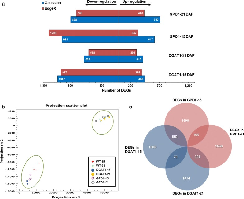 Global changes in the transcriptome profiles in <t>Camelina</t> transgenic lines and wild-type developing seeds. a The number of DEGs and the regulation in DGAT1 and GPD1 lines relative to that in WT is summarized. b Principal component analysis (PCA) indicates the variability of <t>RNA-Seq</t> datasets between WT and transgenic lines in the indicated time points after flowering, and c Venn diagram showing the overlapped relationships between DEGs in DGAT1 and GPD1 lines as compared to WT data. DEGs, differentially expressed genes, WT-15, GPD1–15, and DGAT1–15 indicate the wild-type and transgenic lines data of developing seeds harvested at 10–15 DAF, whereas WT-21, GPD1–21, and DGAT1–21 indicate the wild-type and transgenic lines data of developing seeds harvested at 16–21 DAF. Gaussian and EdgeR indicate the two pipelines analysis platforms used to determine the DEGs. DAF, days after flowering. WT, wild-type; GPD1, lines overexpressing ScGPD1 gene; and DGAT1, lines overexpressing AtDGAT1 gene