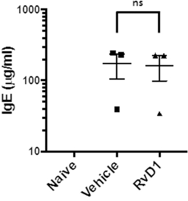Circulating IgE levels in AED mice are not affected by topical RvD1 treatment. Amount of serum IgE was measured by ELISA. Data represents three independent experiments where each experiment consisted of pooled sera from 5 mice for a total of 15 mice.