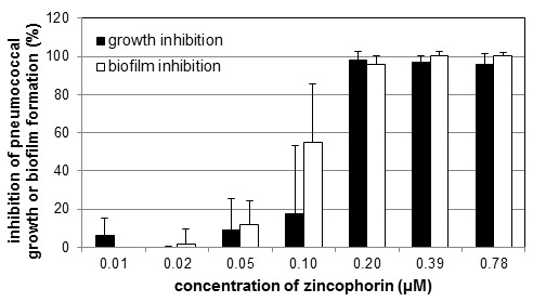 Dose dependence of the effect of zincophorin on growth and biofilm formation of S. pneumoniae DSM20566. Mean values of the inhibitory effect in % with standard deviation of at least 3 tests each with 2 parallels are shown.