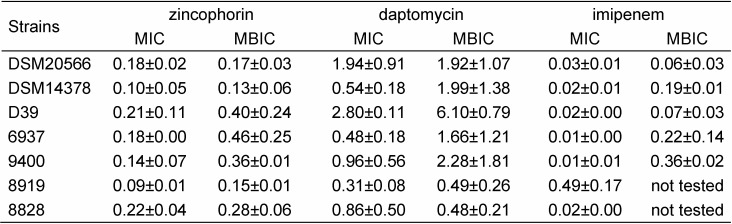 Antibacterial activity of zincophorin, daptomycin, and imipenem. Mean MIC and MBIC values in μM with standard deviation determined for three reference strains and four clinical isolates of S. pneumoniae in microtiter broth dilution and biofilm assay, respectively, are shown.