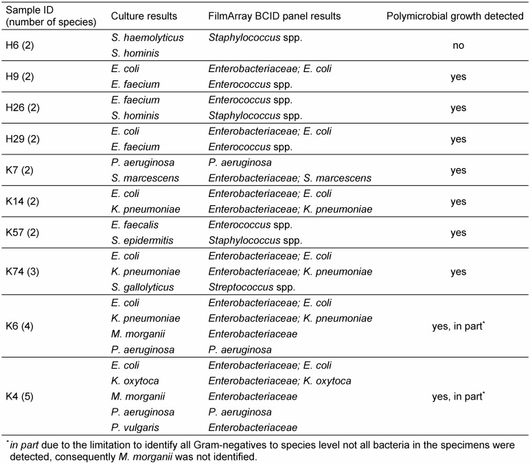 Performance in identification of polymicrobial blood cultures with the <t>FilmArray</t> <t>BCID</t> panel