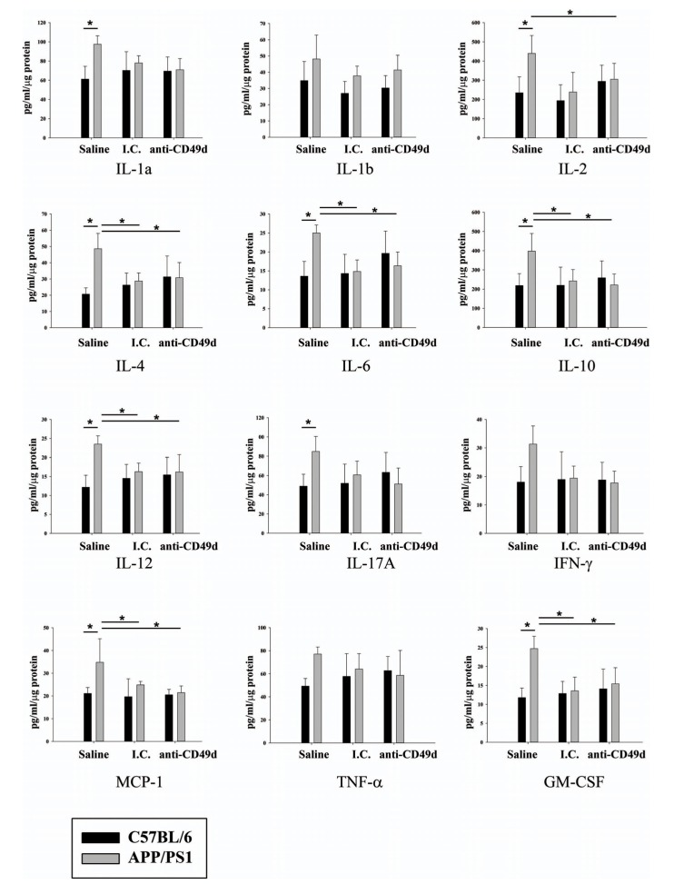 IgG and anti-CD49d injections reduced multiple cytokine levels in the spleen. C57BL/6 and APP/PS1 mice were injected intravenously (tail-vein) with saline, IgG isotype control (purified NA/LE Rat IgG2b) (I.C.) or 2 mg/kg purified NA/LE rat anti-mouse CD49d (anti-CD49d) once a week for 4 weeks. Spleens were dissected out, lysed, and used for multiple cytokine measurements using ELISAs. Cytokine levels were determined from 3-6 animals per group ± SD (*p