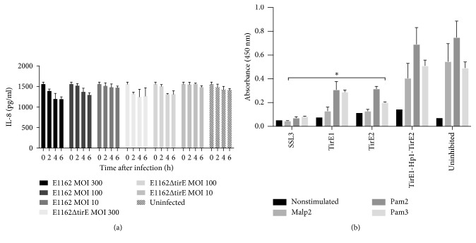 Effect of TirEs and Hp1 on IL-8 release. (a) Presence of tirE1-hp1-tirE2 does not affect IL-8 release. Upon infection of macrophage-like cells (differentiated Thp1 cells) with E1162 and E1162Δtir at MOI 300, MOI 100, and MOI 10, IL-8 was measured in the cellular supernatant at 2 h, 4 h, and 6 h after infection, through IL-8 ELISA. Data are pooled from 3 independent experiments, each in duplicates. (b) Interference of TirE1 and TirE2 with <t>TLR2</t> signaling. IL-8 release was measured as a response of HEK293 cells stably expressing TLR2 towards stimulation with the lipoproteins Malp2, Pam2Cys, and Pam3Cys. The cells were left untreated (nonstimulated) or were added Malp2, Pam2Cys, or Pam3Cys. One hour before stimulation with agonists, the TLR2-expressing HEK293 cells were added SSL3 (well-known inhibitor of TLR2 signaling), TirE1, TirE2, or a combination of TirE1, Hp1, and TirE2 to a final concentration of 10 µ g/ml. IL-8 was quantified in IL-8 ELISA, using TMB as the substrate and measuring the absorbance at 450 nm. Data are shown in triplicates, representative of 3 independent experiments. ∗ P ≤ 0.05, inhibited vs uninhibited: P Tir1Malp2 =0.051, P Tir1Pam2 =0.045, P Tir1Pam3 =0.017, P Tir2Malp2 =0.049, P Tir2Pam2 =0.035, and P Tir2Pam3 =0.004; Abs: absorption.