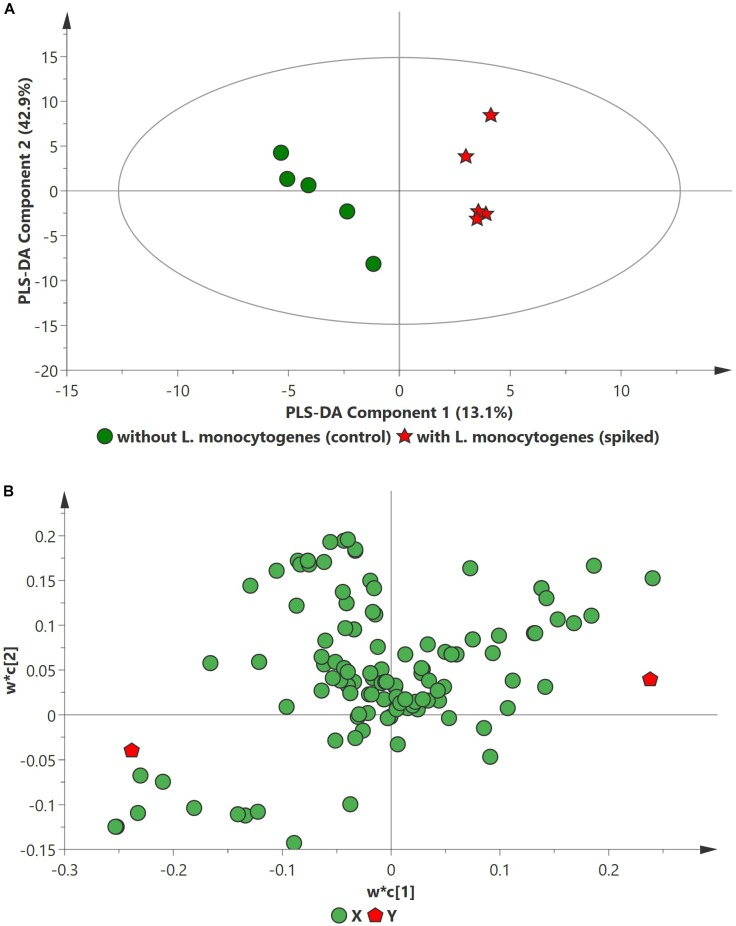 PLS-DA scatter plots of L. <t>monocytogenes</t> inoculated in enriched selective media containing beef sample. (A) PLS-DA Score scatter plot ( R 2 X = 91.5%, R 2 Y = 100%, Q 2 = 91.7%). Green circles (•) indicate data obtained from control beef samples and red stars (★) indicate data from spiked beef samples after 24 h of incubation for L. monocytogenes . The PLS-DA ellipse (solid line) represents the 95% confidence interval. (B) PLS-DA Loading scatter plot.