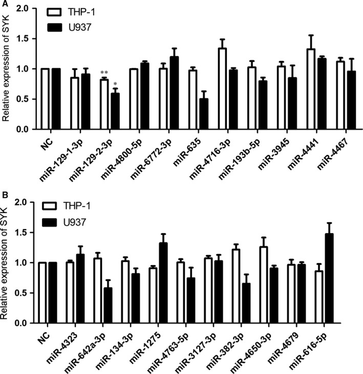 Relative mRNA levels of the gene SYK in cells transfected with mi RNA mimics. (A and B) THP ‐1 or U937 cells were transfected with 50 nM mimic control or the mi RNA mimics, respectively. After 48 hours of transfection, cells were harvested and the total RNA was extracted. The group of cells treated with mimic control ( NC ) served as the control, and the relative expression of SYK was detected by qRT ‐ PCR , normalized to the mRNA levels of beta‐actin in each group. Quantifications of the mRNA levels of SYK were expressed as mean ± SD from three independent experiments. ** P
