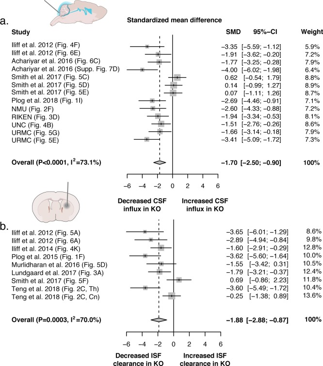 Evidence evaluating the role of AQP4 in CSF influx and ISF efflux. ( a ) Meta-analysis from experiments that delivered either fluorescence- or radio-labeled tracers into the cisterna magna of both Aqp4 KO and wild-type rodents. ( b ) Meta-analysis from studies that delivered intracerebral tracers to evaluate clearance or transport of tracers out of the brain. p-Value is from the overall random effects model. Data in forest plots presented as standardized mean difference (SMD) with a 95% confidence interval (CI). Th: thalamus; Cn: caudate nucleus.