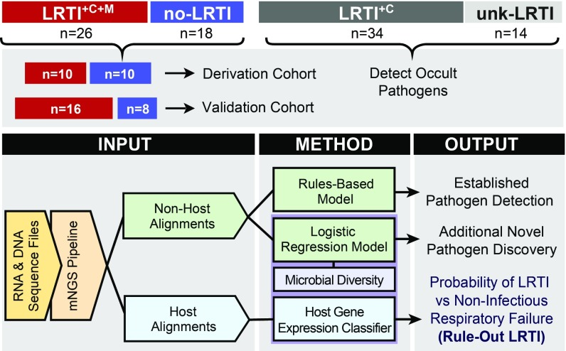 Study overview and analysis workflow. Patients with acute respiratory failure were enrolled within 72 h of ICU admission, and TA samples were collected and underwent both RNA sequencing (RNA-seq) and shotgun DNA sequencing (DNA-seq). Post hoc clinical adjudication blinded to mNGS results identified patients with LRTI defined by clinical and microbiologic criteria (LRTI +C+M ); LRTI defined by clinical criteria only (LRTI +C ); patients with noninfectious reasons for acute respiratory failure (no-LRTI); and respiratory failure due to unknown cause (unk-LRTI). The LRTI +C+M and no-LRTI groups were divided into derivation and validation cohorts. To detect pathogens and differentiate them from a background of commensal microbiota, we developed two models: a rules-based model (RBM) and a logistic regression model (LRM). LRTI probability was next evaluated with ( i ) a pathogen metric, ( ii ) a lung microbiome diversity metric, and ( iii ) a 12-gene host transcriptional classifier. Models were then combined and optimized for LRTI rule out.