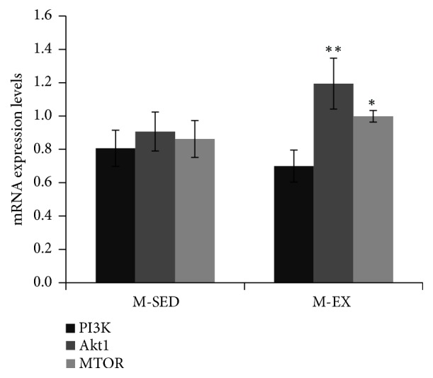 mRNA expression levels of PI3K, Akt, and mTOR, as determined by RT-qPCR. M-SED, middle-aged sedentary control group; M-EX, middle-aged aerobic exercise runner group; ∗ ρ