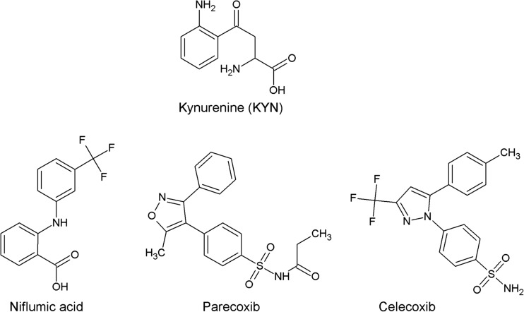 Molecular structures of niflumic acid, parecoxib, celecoxib, and KYN—physiological substrate of KAT II