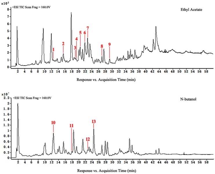 HPLC-ESI-TOF-MS total ion chromatograms of ethyl acetate and n-butanol of extracts from group A.