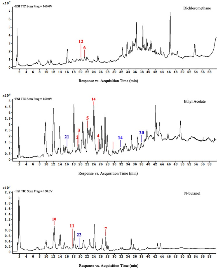 HPLC-ESI-TOF-MS total ion chromatograms of dichloromethane, ethyl acetate, and n-butanol of extracts from group C.