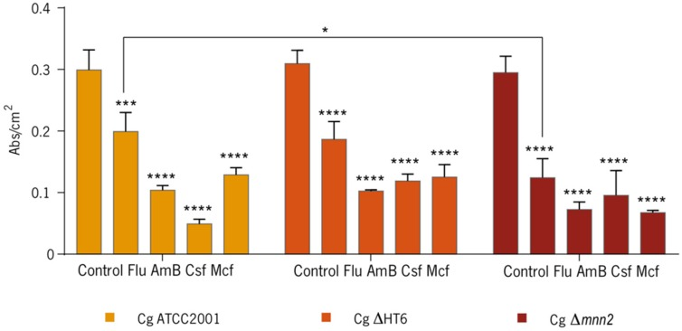 Crystal Violet in a 48-h-biofilm of C. glabrata ATCC2001, C. glabrata ΔHT6, and C. glabrata Δ mnn2 with and without antifungal agents. The quantification of the biomass is presented by abs/cm 2 . (* p