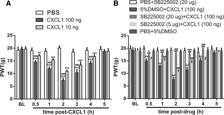 VlPAG micro-injection of CXCL1 induces mechanical allodynia via CXCR2. a Micro-injection of CXCL1 (10 or 100 ng) induces a dose-dependent mechanical allodynia. n = 8, *** p