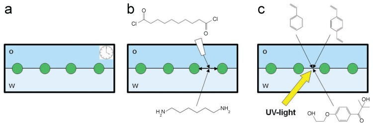 Schematics of the three different immobilization routes. ( a ) spontaneous immobilization at a water–decane interface. Particles within the monolayer simply become immobile with time; ( b ) nylon interfacial polymerization. After the spontaneous interfacial adsorption of 1,6-diaminohexane from the water phase, sebacoyl dichloride is injected into the organic phase to start the polymerization; ( c ) polystyrene interfacial polymerization. After the spontaneous interfacial adsorption of the monomer (styrene) and crosslinker ( p <t>-divinylbenzene)</t> from the oil phase and of the initiator (Irgacure 2959) from the water phase, the system is illuminated by UV light to initiate the free radical polymerization of styrene at the interface.