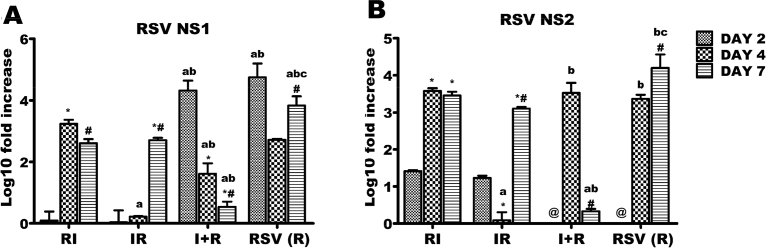 Respiratory syncytial virus (RSV) NS1 and NS2 genes expressions across the experimental groups. Six groups of BALB/c mice were intranasally treated with 32 μl of normal saline (uninfected), RSV A2 (RSV(R)), Pr/H3N2 (IAV (I)) or co-treated simultaneously (I + R) or one after the other at 24 hours interval (IR and RI). On days 2, 4 and 7, mRNA was extracted from lungs (n = 5) for real time PCR analysis of RSV genes. (A) mRNA expression level of NS1 gene (B) mRNA expression level of NS2. RSV NS1 and NS2 expressions were downregulated by day 7 in I + R group. CT values were normalized with GADPH, mRNA expression level was calculated using 2 −ΔΔCT method and presented as Log10 fold increase relative to uninfected controls. mRNA expressions for RSV NS1 and NS2 were not detected in IAV (single virus) infected mice. * vs Day 2 and # vs Day 4 for within group comparison while a vs RI, b vs IR and c vs I + R for comparing between groups of the same day (p